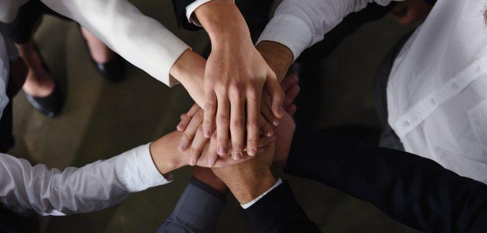 Telefónica Movistar y ZTE firmaron una alianza para llevar a cabo el despliegue de su red metropolitana de fibra óptica de alta capacidad.