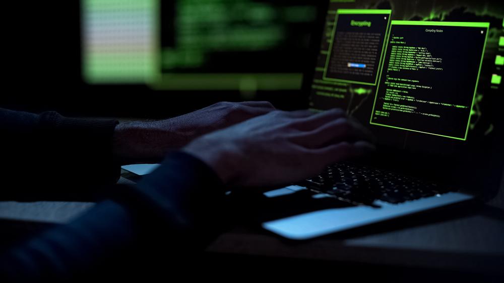 La Comisionada del INAI advirtió que el costo de los embates informáticos puede equivaler al 1% del PIB.